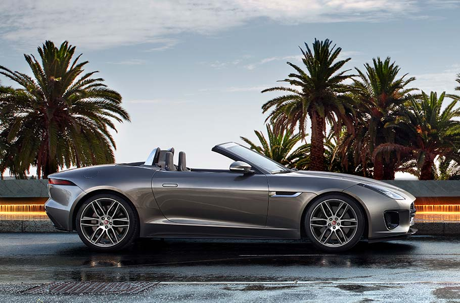 Grey F TYPE Convertible Parked by Water Fountain Palm Trees