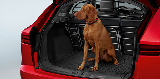 Jaguar E-PACE Pet Pack