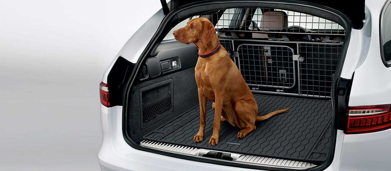 A partition keeps the passenger space your own, along with mats and seat covers to protect your vehicle's interior.