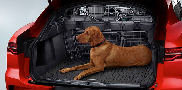 Jaguar I-PACE Pet Pack