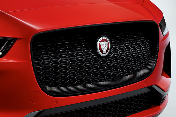 CARBON FIBRE GRILLE SURROUND.