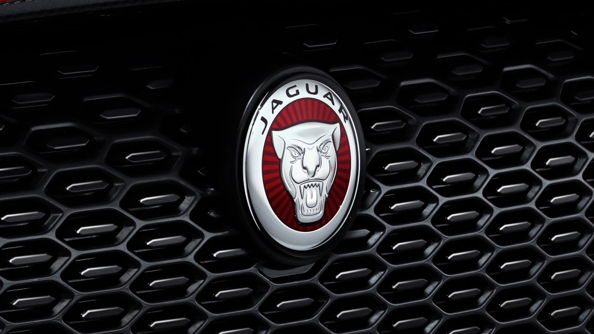 A close up of the front grill with the growler Jaguar logo