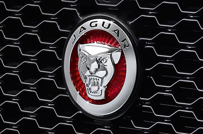 Jaguar Badge on grill.