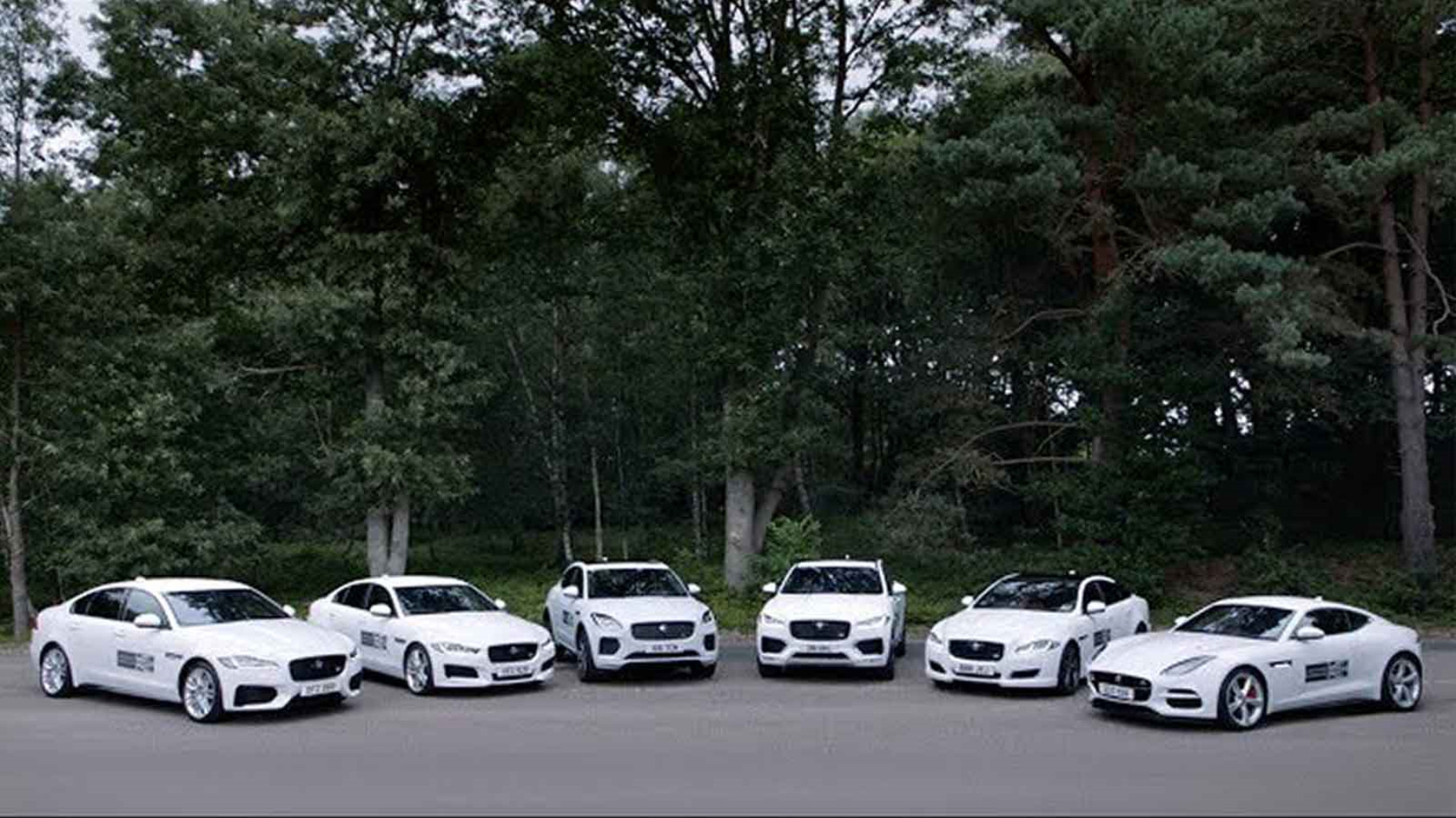 Six White F-TYPE'S Parked.