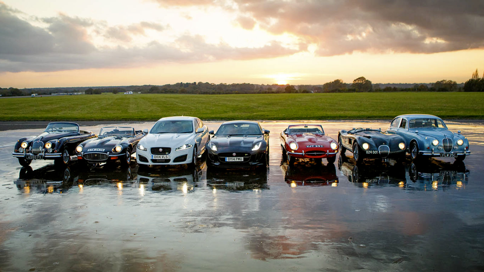 7 Jaguar's lines up in a row with headlights on.