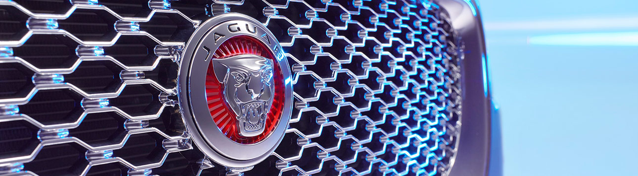 Jaguar emblem on front of vehicle.