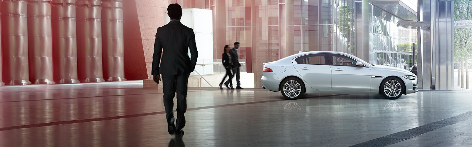 White Jaguar indoors with man