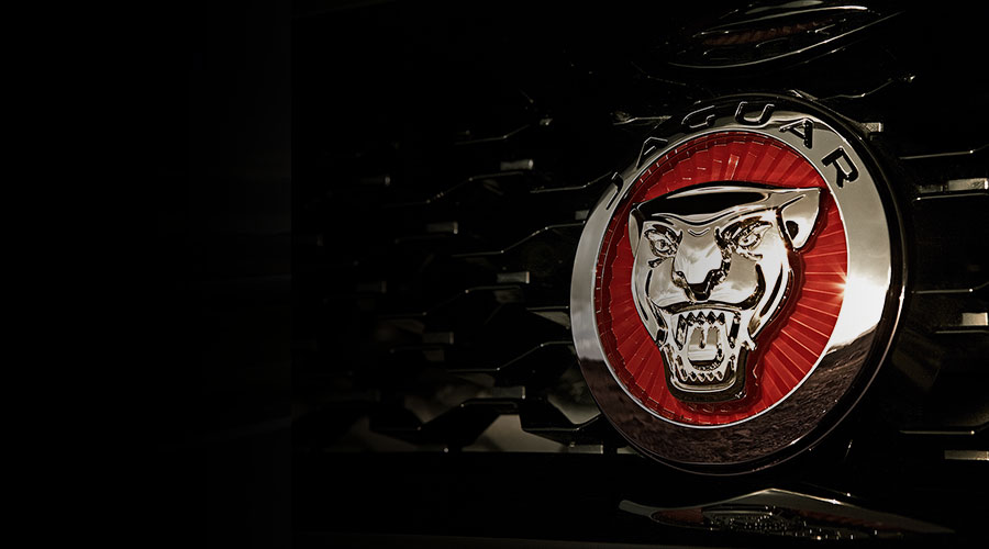 Jaguar Logo on front of vehicle.