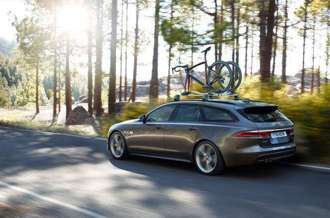 Grey Jaguar XF Driving By Some Trees