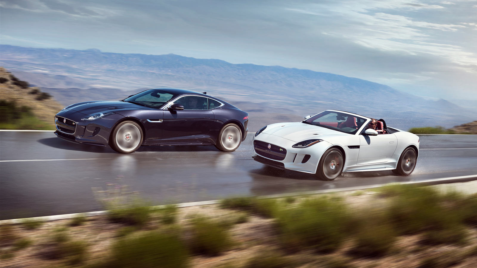 Jaguar f-type convertible and coupe driving side by side.