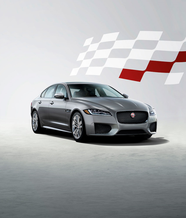 Jaguar Grey XF Checkered Flag Model.